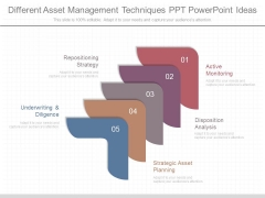 Different Asset Management Techniques Ppt Powerpoint Ideas