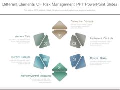 Different Elements Of Risk Management Ppt Powerpoint Slides
