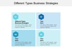 Different Types Business Strategies Ppt PowerPoint Presentation Icon Objects Cpb