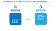 Different Types Of Business Assumptions And Dependencies Ppt File Infographics PDF