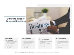 Different Types Of Business Structures Ppt PowerPoint Presentation Inspiration Example