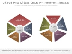Different Types Of Sales Culture Ppt Powerpoint Templates