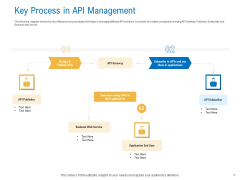 Digital Businesses Ecosystems Key Process In API Management Background PDF