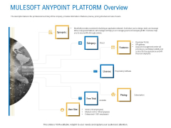 Digital Businesses Ecosystems Mulesoft Anypoint Platform Overview Guidelines PDF