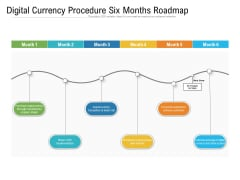 Digital Currency Procedure Six Months Roadmap Graphics