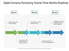 Digital Currency Purchasing Tutorial Three Months Roadmap Download