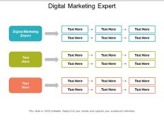 Digital Marketing Expert Ppt PowerPoint Presentation Portfolio Aids Cpb