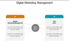 Digital Marketing Management Ppt PowerPoint Presentation Ideas Aids Cpb