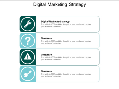 Digital Marketing Strategy Ppt PowerPoint Presentation Model Layouts Cpb