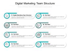Digital Marketing Team Structure Ppt PowerPoint Presentation Portfolio Slideshow Cpb