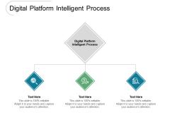 Digital Platform Intelligent Process Ppt PowerPoint Presentation Infographic Template Example File Cpb Pdf