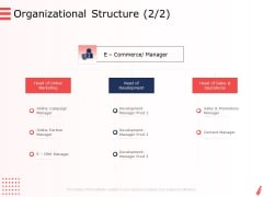 Digital Products And Services Organizational Structure Sales Ppt Ideas Guidelines PDF