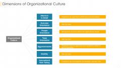 Dimensions Of Organizational Culture Formats PDF