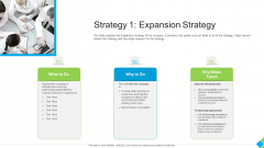 Diminishing Market Share Of A Telecommunication Firm Case Competition Strategy 1 Expansion Strategy Professional PDF