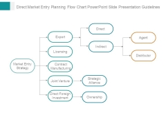 Direct Market Entry Planning Flow Chart Powerpoint Slide Presentation Guidelines