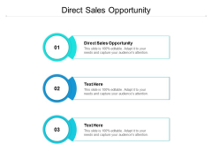 Direct Sales Opportunity Ppt PowerPoint Presentation Summary Display Cpb
