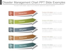 Disaster Management Chart Ppt Slide Examples