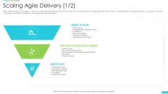 Discipline Agile Delivery Software Development Scaling Agile Delivery Infographics PDF