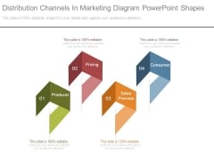 Distribution Channels In Marketing Diagram Powerpoint Shapes