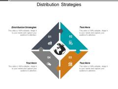 Distribution Strategies Ppt PowerPoint Presentation Infographics Skills Cpb