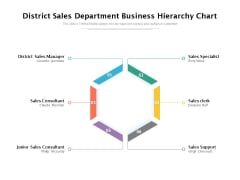 District Sales Department Business Hierarchy Chart Ppt PowerPoint Presentation File Images PDF