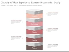 Diversity Of User Experience Example Presentation Design