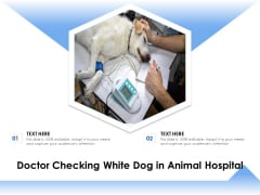 Doctor Checking White Dog In Animal Hospital Ppt PowerPoint Presentation Model Templates PDF