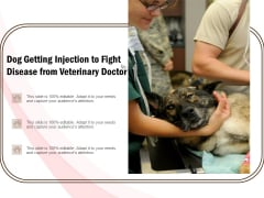 Dog Getting Injection To Fight Disease From Veterinary Doctor Ppt PowerPoint Presentation Summary PDF