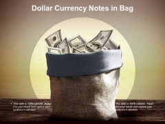 Dollar Currency Notes In Bag Ppt PowerPoint Presentation Model Format