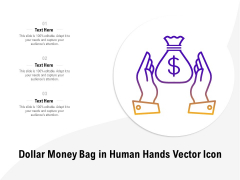 Dollar Money Bag In Human Hands Vector Icon Ppt PowerPoint Presentation Summary Introduction