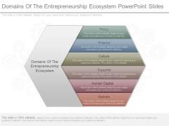 Domains Of The Entrepreneurship Ecosystem Powerpoint Slides