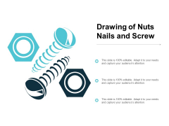Drawing Of Nuts Nails And Screw Ppt PowerPoint Presentation Portfolio Files