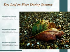 Dry Leaf On Floor During Summer Ppt PowerPoint Presentation Icon Example Introduction PDF