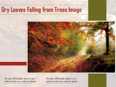Dry Leaves Falling From Trees Image Ppt PowerPoint Presentation Show Images PDF