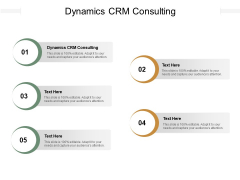 Dynamics CRM Consulting Ppt PowerPoint Presentation Show Graphic Images Cpb Pdf