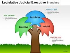 Design Legislative Judicial Executive Branches PowerPoint Slides And Ppt Diagram Templates