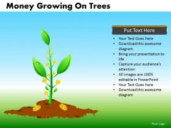 Dollar Investments Growth PowerPoint Templates Ppt Slides