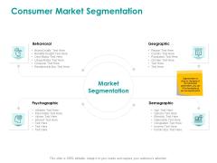 EMM Solution Consumer Market Segmentation Download PDF