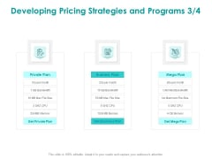 EMM Solution Developing Pricing Strategies And Programs Private Ppt Infographics Example PDF