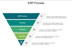 ERP Process Ppt PowerPoint Presentation Ideas Examples Cpb