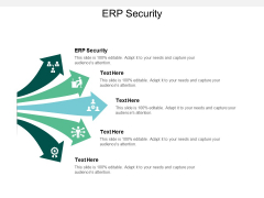 ERP Security Ppt PowerPoint Presentation Gallery Example Cpb