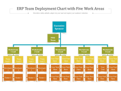 ERP Team Deployment Chart With Five Work Areas Ppt PowerPoint Presentation File Samples PDF