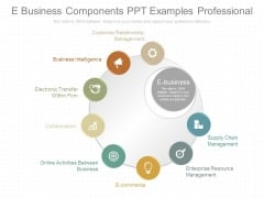 E Business Components Ppt Examples Professional