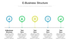 E Business Structure Ppt PowerPoint Presentation Gallery Elements Cpb