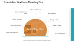 E Healthcare Management System Essentials Of Healthcare Marketing Plan Ppt Professional Slide Portrait PDF
