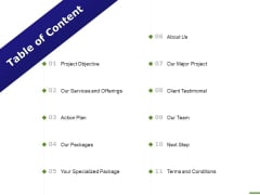 E Marketing Table Of Content Action Plan Ppt Professional Information PDF
