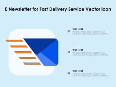 E Newsletter For Fast Delivery Service Vector Icon Ppt PowerPoint Presentation Gallery Examples PDF