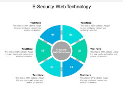 E Security Web Technology Ppt PowerPoint Presentation File Display Cpb