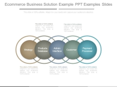 Ecommerce Business Solution Example Ppt Examples Slides