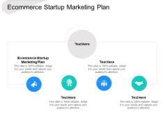 Ecommerce Startup Marketing Plan Ppt PowerPoint Presentation File Summary Cpb